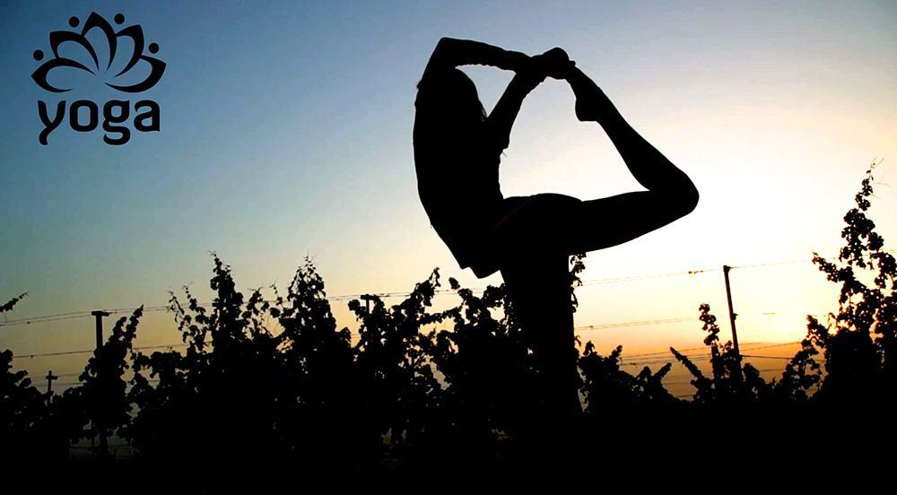 Yoga & Joy (Paula Demartini)